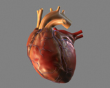 t_heart